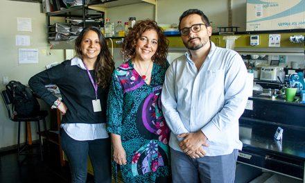 Identifican potencial blanco para nuevas drogas contra tumores de mama y de ovario