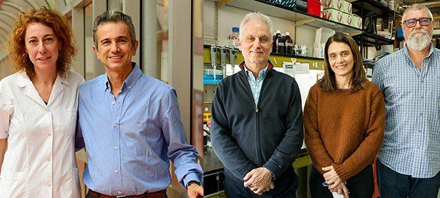 Científicos argentinos se unen para enfrentar un cáncer pediátrico