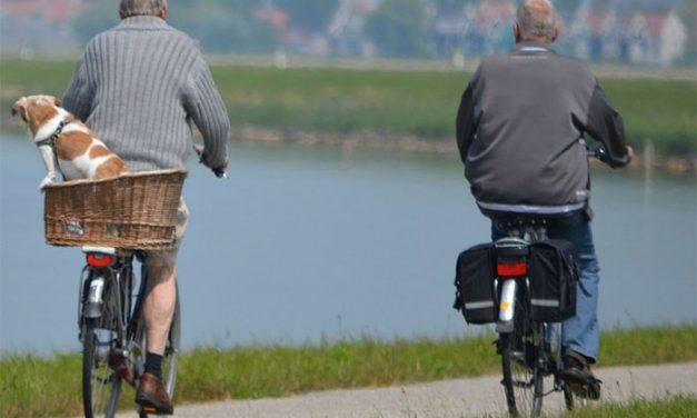Desarrollan instrumento que cuantifica el miedo a caerse en pacientes con Parkinson