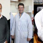 Identifican mecanismo que regula a una proteína clave del virus del papiloma humano