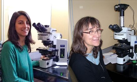 Descubren tres nuevas especies de gusanos marinos en Río Negro