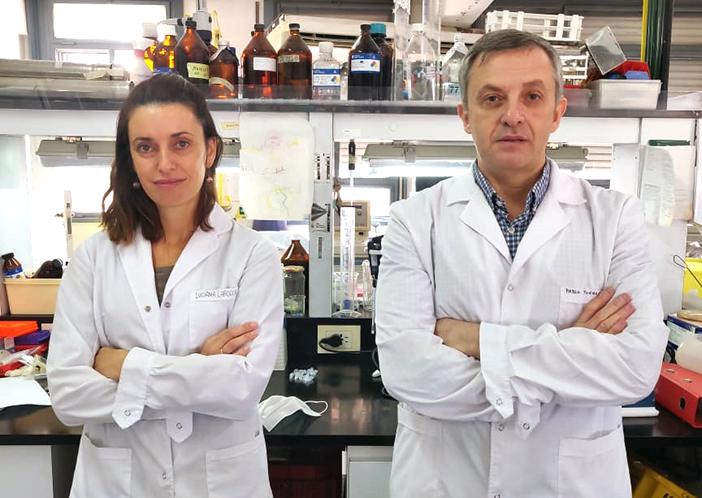Con un test rápido en desarrollo, científicos argentinos logran detectar coronavirus en muestras de pacientes positivos