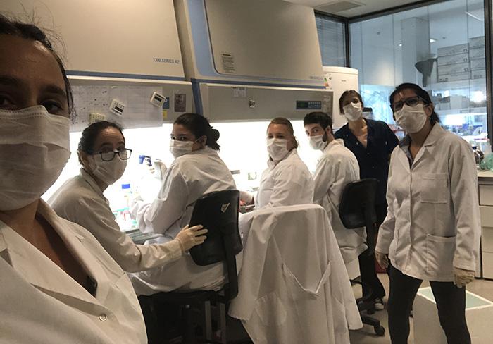 Comienza el desarrollo de una vacuna argentina contra el nuevo coronavirus