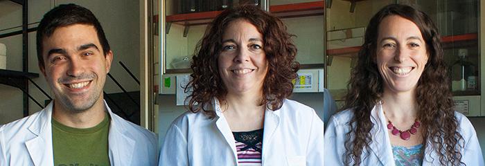Estudio argentino encuentra claves para controlar la capacidad de cambios de células tumorales en cultivo