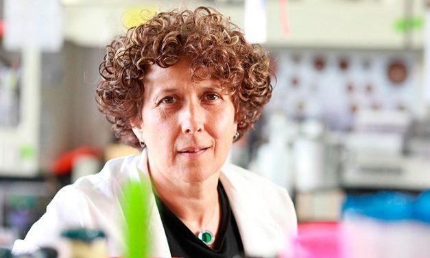 Andrea Gamarnik fue incorporada a la Academia Estadounidense de las Artes y las Ciencias