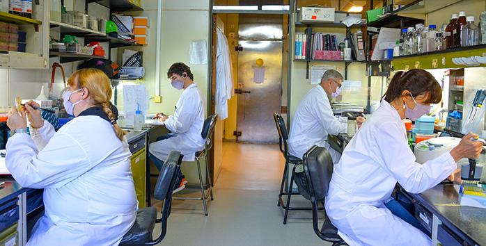 COVID-19: El Instituto Leloir, el CONICET y la compañía biotecnológica Vaxinz firman acuerdo para el desarrollo de una vacuna de segunda generación